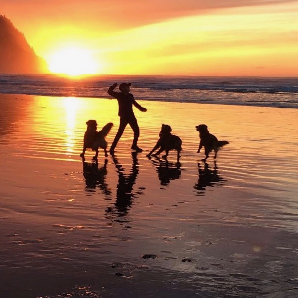 On December 24, 2018, Dawn Gimbel-Myers captured her son and a few dog friends playing on an Oregon beach.
